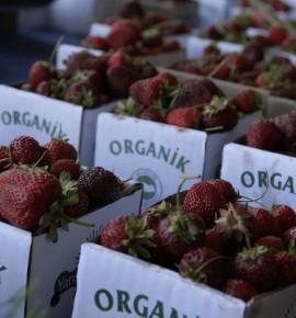 Organik gıda: Üretiyoruz ama tüketmiyoruz