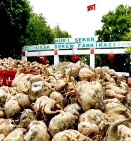 """""""ŞEKER FABRİKALARI CUMHURİYETİN KALELERİDİR"""""""